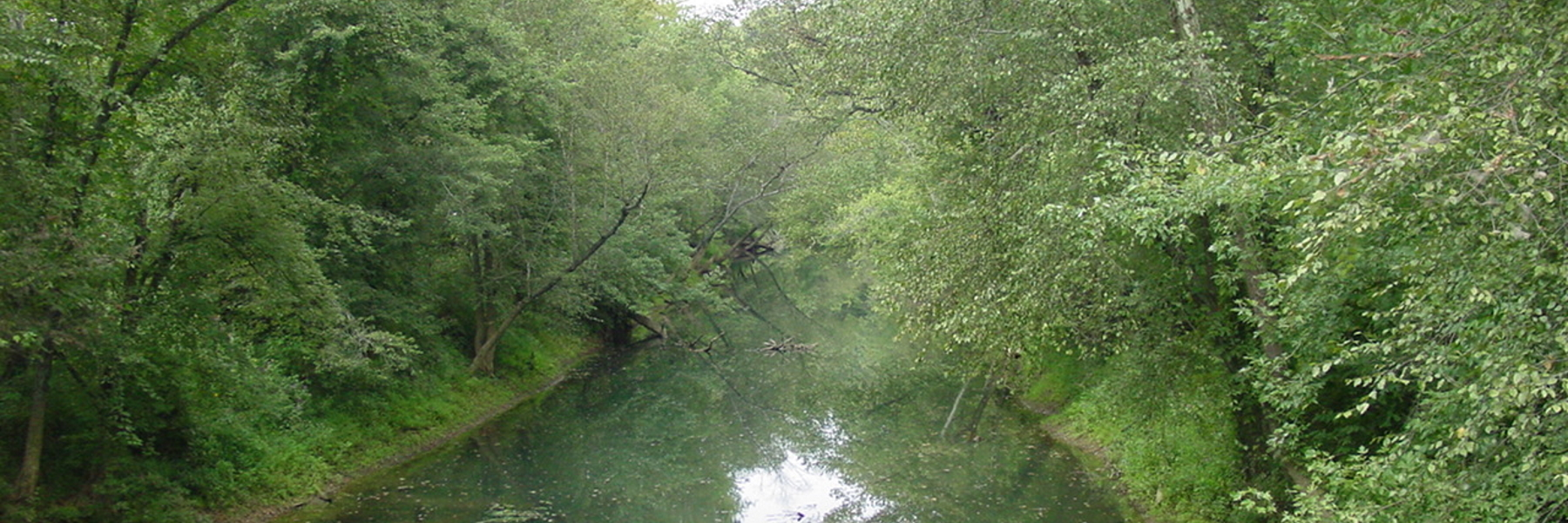 River Overhead View